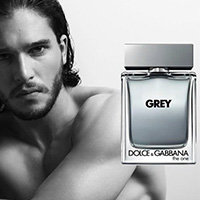 The One for Men Grey